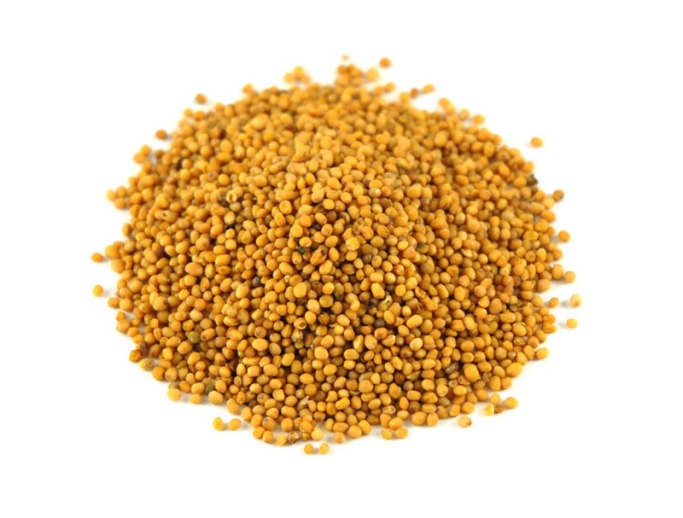 mustard-seeds-hot-oriental-1