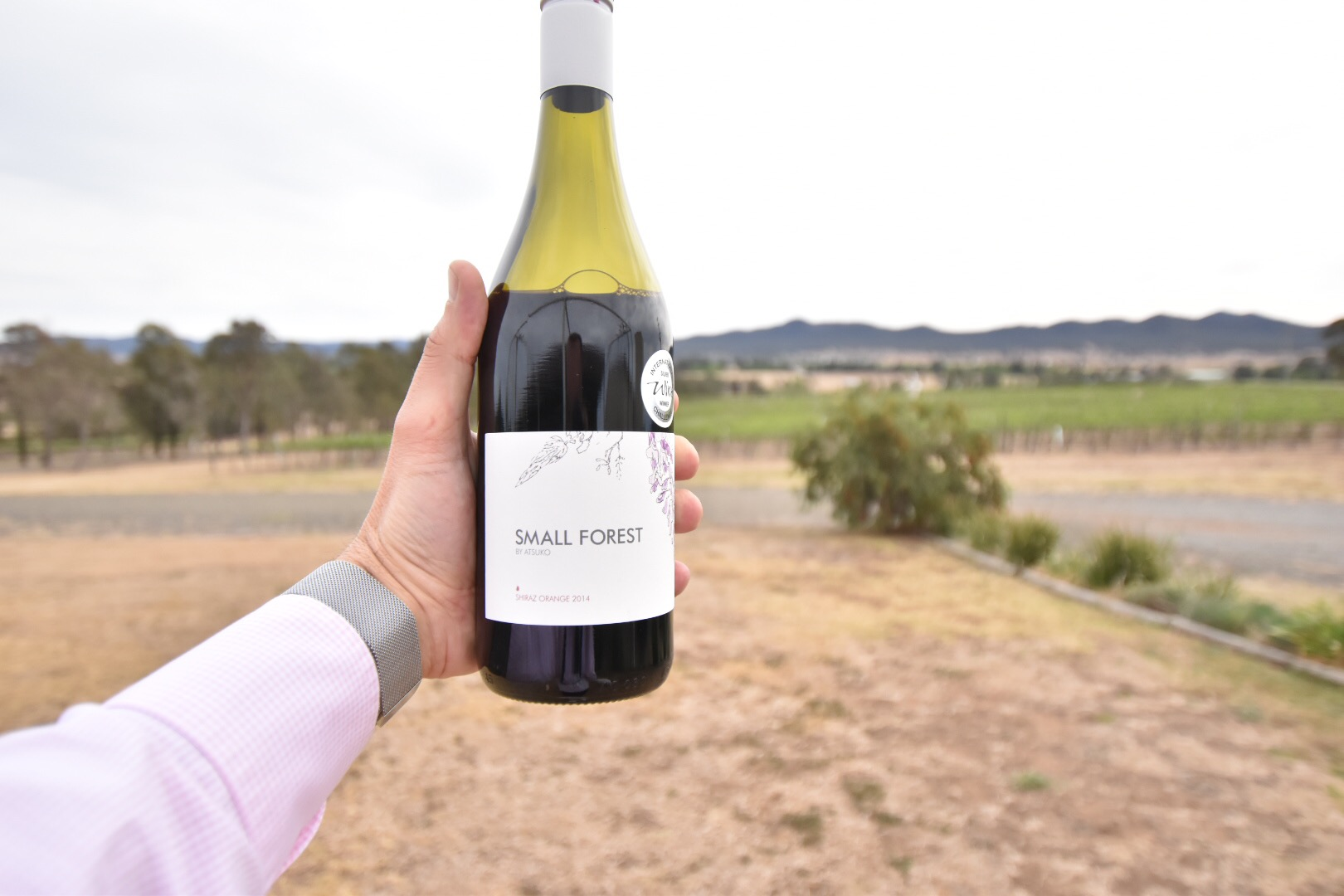 sydney food wine blog hunter valley shiraz small forest by atsuko wines