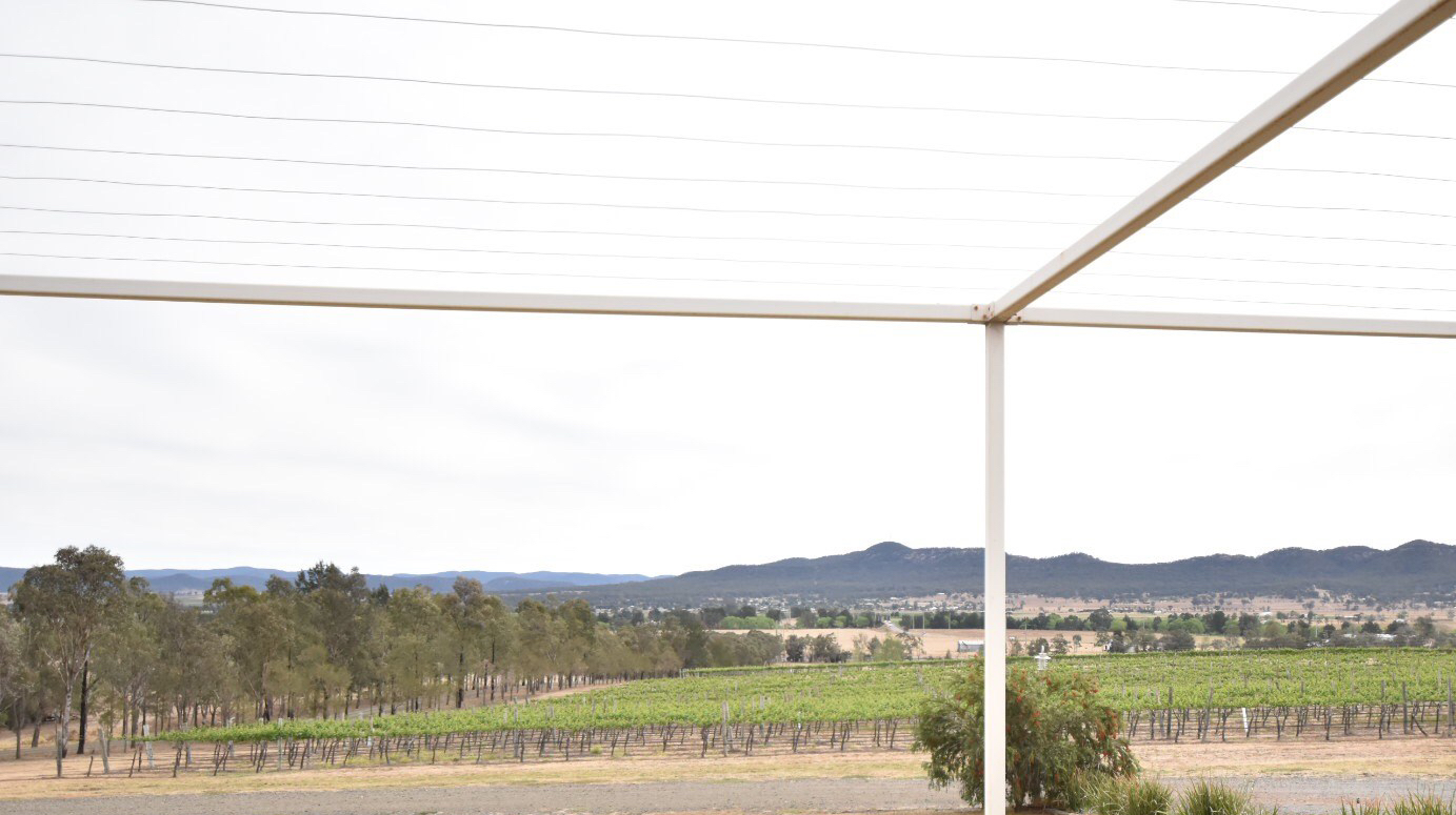 sydney food wine blog hunter valley small forest by atsuko wines