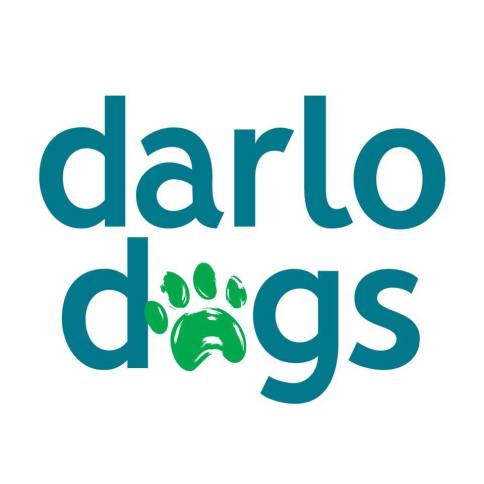Darlinghurst dog day care grooming